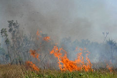 Brushfire. Fierce brushfire with red flames and smoke, Kakadu National Park, Australia stock photography