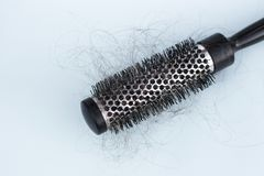 Brushing with loose hair, concept of hair loss, hair care stock photos