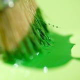 Brushing macro detail Stock Photo