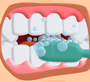 Brushing teeth. Brushing your teeth with your mouth open Stock Images