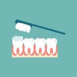 brushing teeth Isolerat över vit bakgrund Tandkrämbubblaskum Design för vektorillustrationlägenhet på bakgrund Arkivbilder