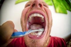 brushing teeth tand- hygien Royaltyfria Bilder