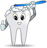 Brushing Tooth royalty free stock photos