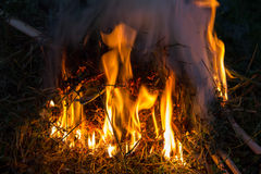 Brushwood fire. Fire over dry brushwood in the night Royalty Free Stock Photos