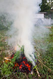 Brushwood fire. Fire over dry brushwood in green grass Royalty Free Stock Photos