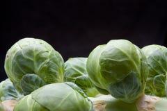brussel - стержень ростков стоковое фото