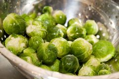 Brussel. Sprout in silver strainer Royalty Free Stock Images
