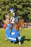 Middeleeuwse Viering in Abbey DE Forest Royalty-vrije Stock Afbeeldingen