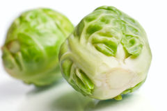 Brussel sprout buds over white Royalty Free Stock Image