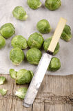 Brussel sprout before cleaning on kitchen papier Stock Images