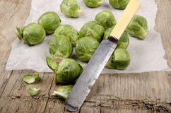 Brussel sprout before cleaning on kitchen papier Royalty Free Stock Image