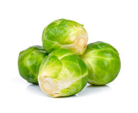 Brussel sprout isolated on the white background.  Stock Images