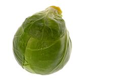 Brussel Sprout Macro. Isolated macro image of a Brussel Sprout Stock Photography