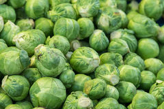 Brussel sprout Organic fresh vegetables at the market Royalty Free Stock Images