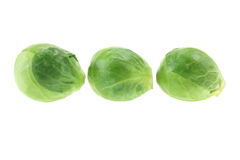 Brussel Sprouts. On White Background stock image