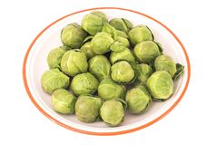 Brussel sprouts. Fresh Brussel sprouts stock photos
