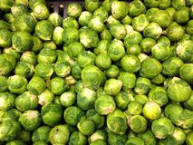 Brussel sprouts background. Stock Photo