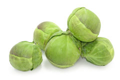 Brussel sprouts cabbage Stock Image