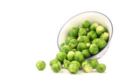 Brussel sprouts coming from a decorated bowl Royalty Free Stock Image