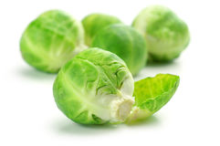 Brussel sprouts. Fresh brussel sprouts isolated on white background Stock Photos