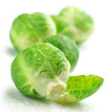 Brussel sprouts. Fresh wet brussel sprouts isolated on white background Royalty Free Stock Photo