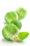 Brussel sprouts. Fresh wet brussel sprouts isolated on white background Royalty Free Stock Image