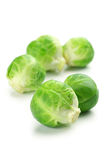 Brussel sprouts. Fresh brussel sprouts  on white background Royalty Free Stock Photos