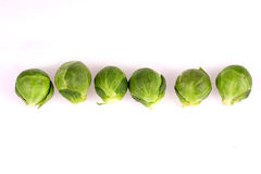 Brussel Sprouts Line Royalty Free Stock Photo