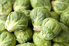 Brussel Sprouts in Pile Stock Images