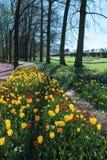 Brusseles Floralia Grand Bigard Royalty Free Stock Photo