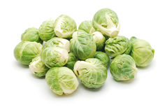 Brussels cabbage Royalty Free Stock Photo