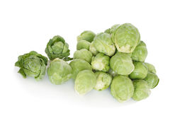 Brussels cabbage Royalty Free Stock Photography