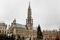 BRUSSELS - DECEMBER 10: Christmas tree in Grand Place, the central square of Brussels covered in snow. Royalty Free Stock Images