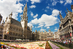 Brussels Flower Carpet 2016 Royalty Free Stock Photos
