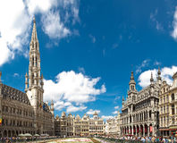 Brussels Flower Carpet 2016 Royalty Free Stock Images