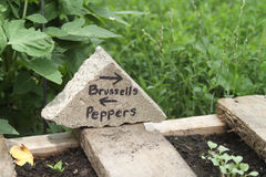 Brussels and Peppers handmade garden sign Royalty Free Stock Images