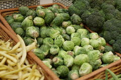 Brussels sprout Royalty Free Stock Photography