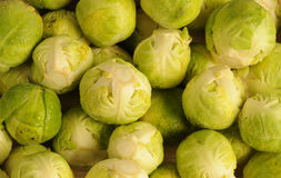 Brussels sprout. Close- up of some Brussels sprout Stock Photography