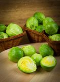 Brussels sprout Stock Images