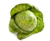 Brussels sprout, isolated on  white background Royalty Free Stock Photo