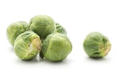Raw Brussels sprout isolated. Brussels sprout isolated on white background fresh raw heads Royalty Free Stock Images