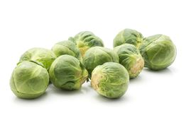 Raw Brussels sprout isolated. Brussels sprout isolated on white background fresh raw Stock Image