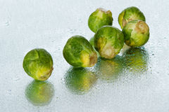 Brussels sprout on wet surface Stock Images