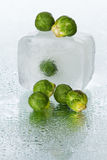 Brussels sprout on wet surface Royalty Free Stock Photo