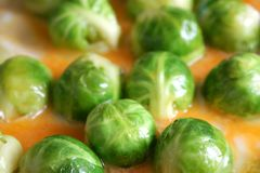 Brussels sprouts. The Brussels sprouts is fried in an omelette Royalty Free Stock Image