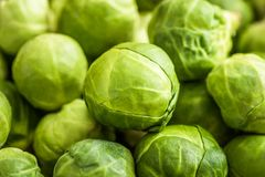 Brussels Sprouts Background. Closeup of Many Fresh Brussels Sprouts. Green Background Stock Photography
