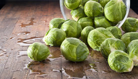 Brussels Sprouts Background. Fresh brussels sprouts spilling out of a glass bowl on a wood table spayed with water Royalty Free Stock Photography