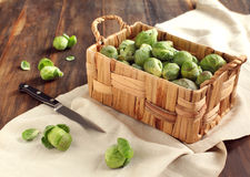 Brussels sprouts in a basket. Brussels sprouts in the basket Stock Photos