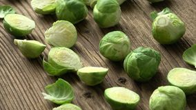 Brussels sprouts Brassica oleracea stock footage