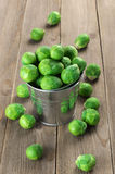 Brussels sprouts in bucket. Fresh Brussels sprouts in galvanized bucket on rustic wooden background Royalty Free Stock Image